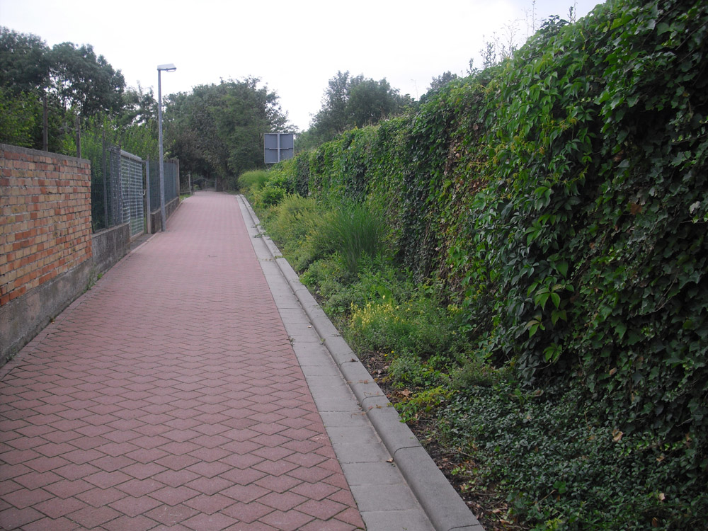 Begrünte Lärmschutzwand mit Fußweg